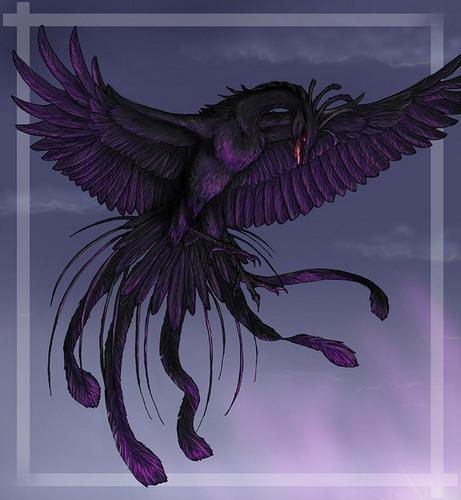 black phoenix 2