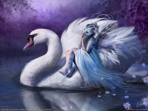 পরী দেওয়ালপত্র titled fairy