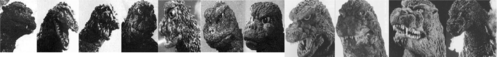 godzilla over the years (bigger) - godzilla Photo