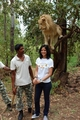 misha and lion!!!! - pyaar-kii-ye-ek-kahani-by-pialy photo