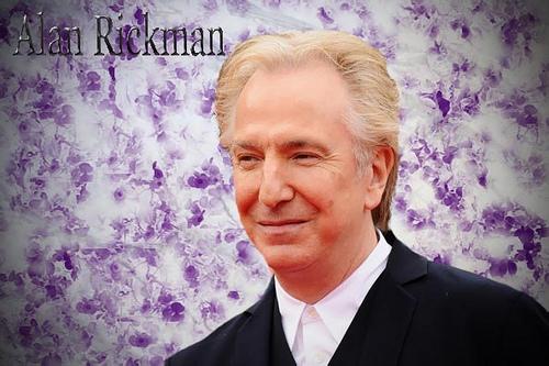 mr rickman