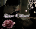 my new bamon wallpaper set: 11 a flower - damon-and-bonnie wallpaper