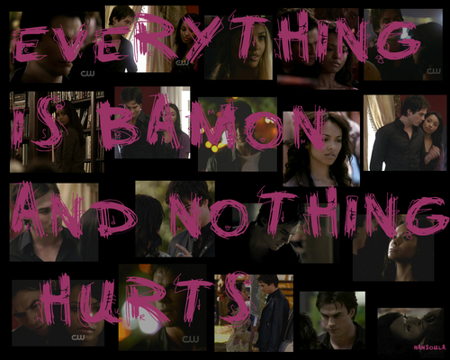 Damon & Bonnie wallpaper containing a sign titled my new bamon wallpaper set: 16 EVERYTHING IS BAMON AND NOTHING HURTS