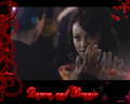 my new bamon wallpaper set: 3 hand holding - damon-and-bonnie wallpaper