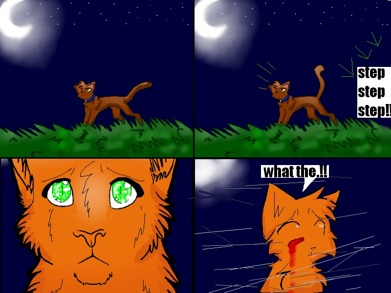 Download Warrior Cats Into The Wild