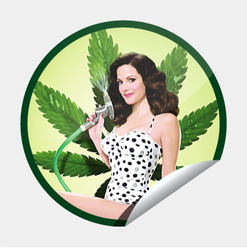 -Weeds Sticker-