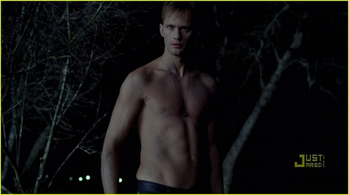 Alexander Skarsgard: Shirtless 'True Blood' Pics!