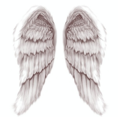 Annaleighna's Wings