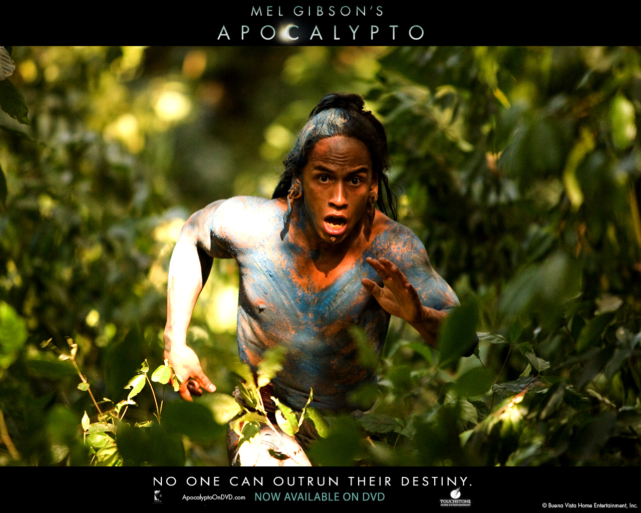 apocalypto images apocalypto hd wallpaper and background