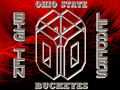 ohio-state-buckeyes - BIG TEN LEADERS wallpaper