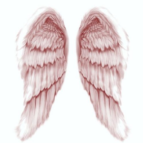Brishelle's Wings