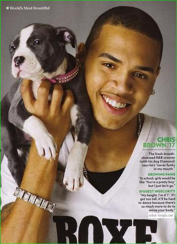 Chris Brown - chris-brown Photo