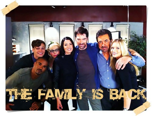 Criminal Minds Team