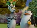 Gah... - skipper-the-penguins-of-madagascar screencap