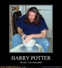 Harry Potter Demotivational Fotos