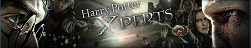 Harry Potter Xperts Banner