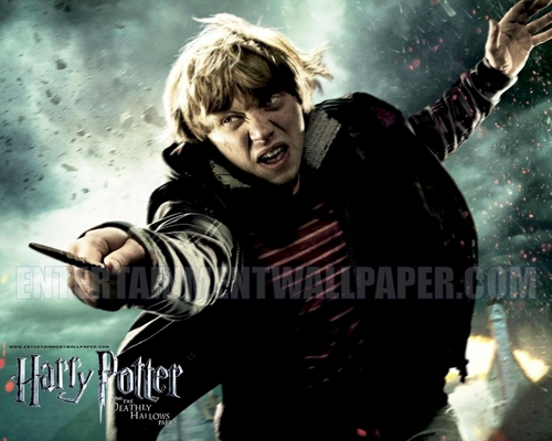 Harry Potter and the Deathly Hallows: Part II (2011)
