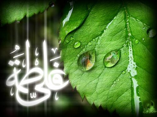 Ислам Обои entitled Imam Ali