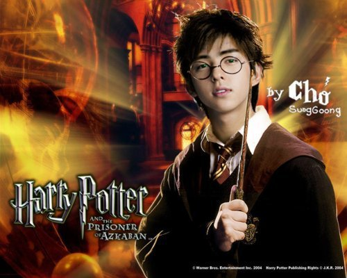 LOL (suju turns into Harry potter characters!)