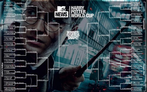 mtv Harry Potter World Cup Bracket