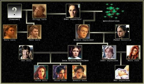 Luke and Mara Skywalker wallpaper entitled Family tree