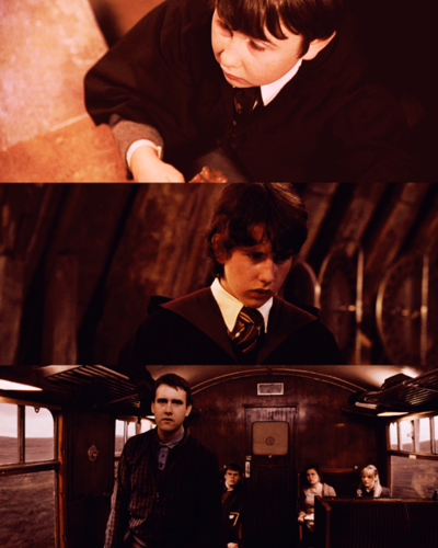 Neville Longbottom: Forever my hero♥