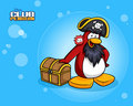 Rockhopper - club-penguin photo