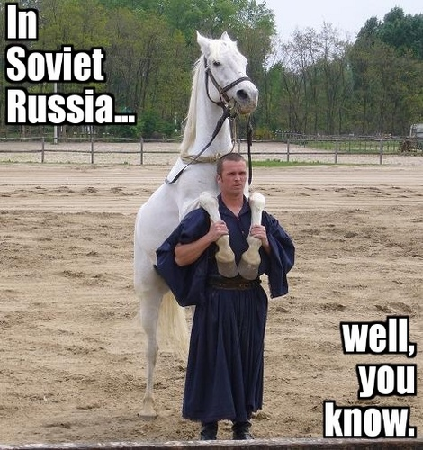 Random پیپر وال with a lippizan, a horse trail, and a horse wrangler titled Soviet Russia Jokes!