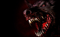 The Dark Werewolf - werewolves photo