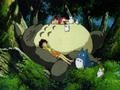 Totoro wallpaper - studio-ghibli wallpaper
