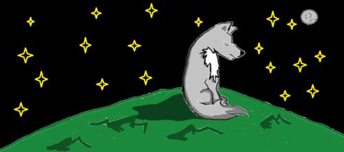 chó sói, sói