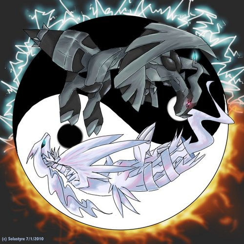 Reshiram and Zekrom fond d'écran entitled Zekrom