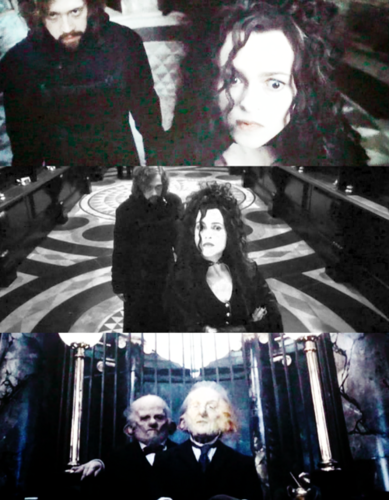 **SPOILERS** Bellatrix ~~ Death Hallows