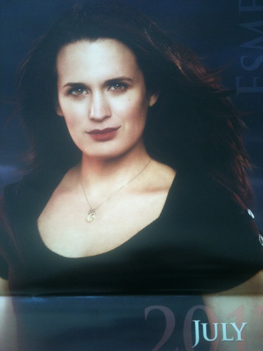 'The Twilight Saga : Breaking Dawn Part 1' 2012 Calendar				 - esme-cullen Photo