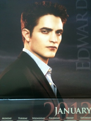 The Cullens वॉलपेपर with a business suit, a suit, and a three piece suit entitled 'The Twilight Saga : Breaking Dawn Part 1' 2012 Calendar