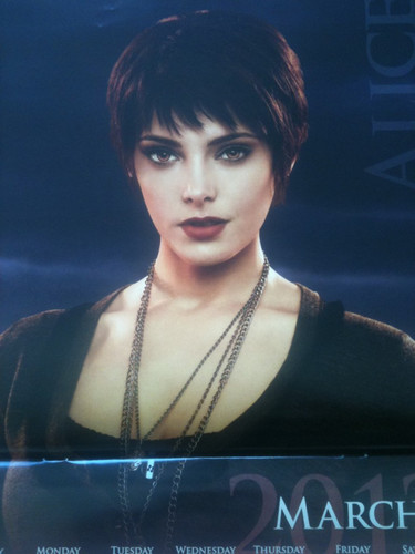 The Cullens wallpaper probably with a sign and a portrait titled 'The Twilight Saga : Breaking Dawn Part 1' 2012 Calendar