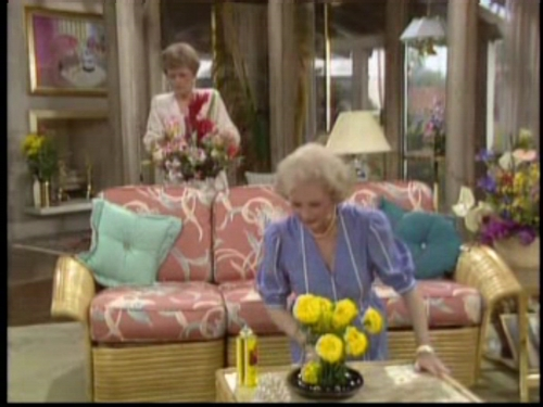 The Golden Girls Images 1x04 Transplant Hd Wallpaper And