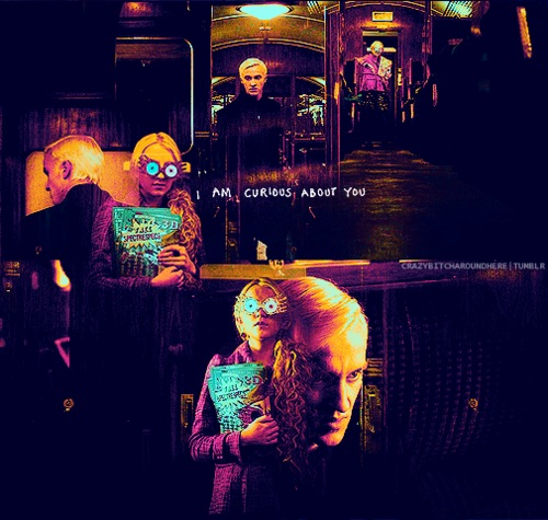 http://images4.fanpop.com/image/photos/23700000/Draco-and-Luna-draco-and-luna-23763417-500-475.jpg