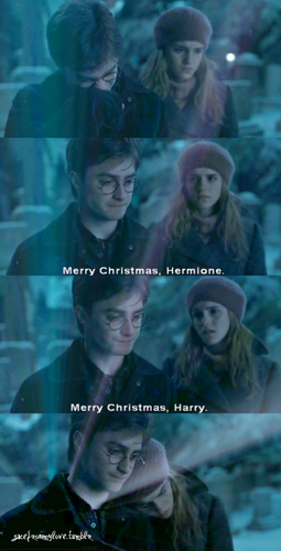 Harry & Hermione- DH part 1