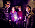 Harry, Neville, Ron and Hermione