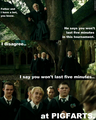 Harry Potter Pics - harry-potter-vs-twilight photo