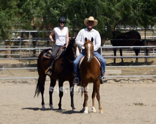 Kristen Stewart takes private horseback riding lessons