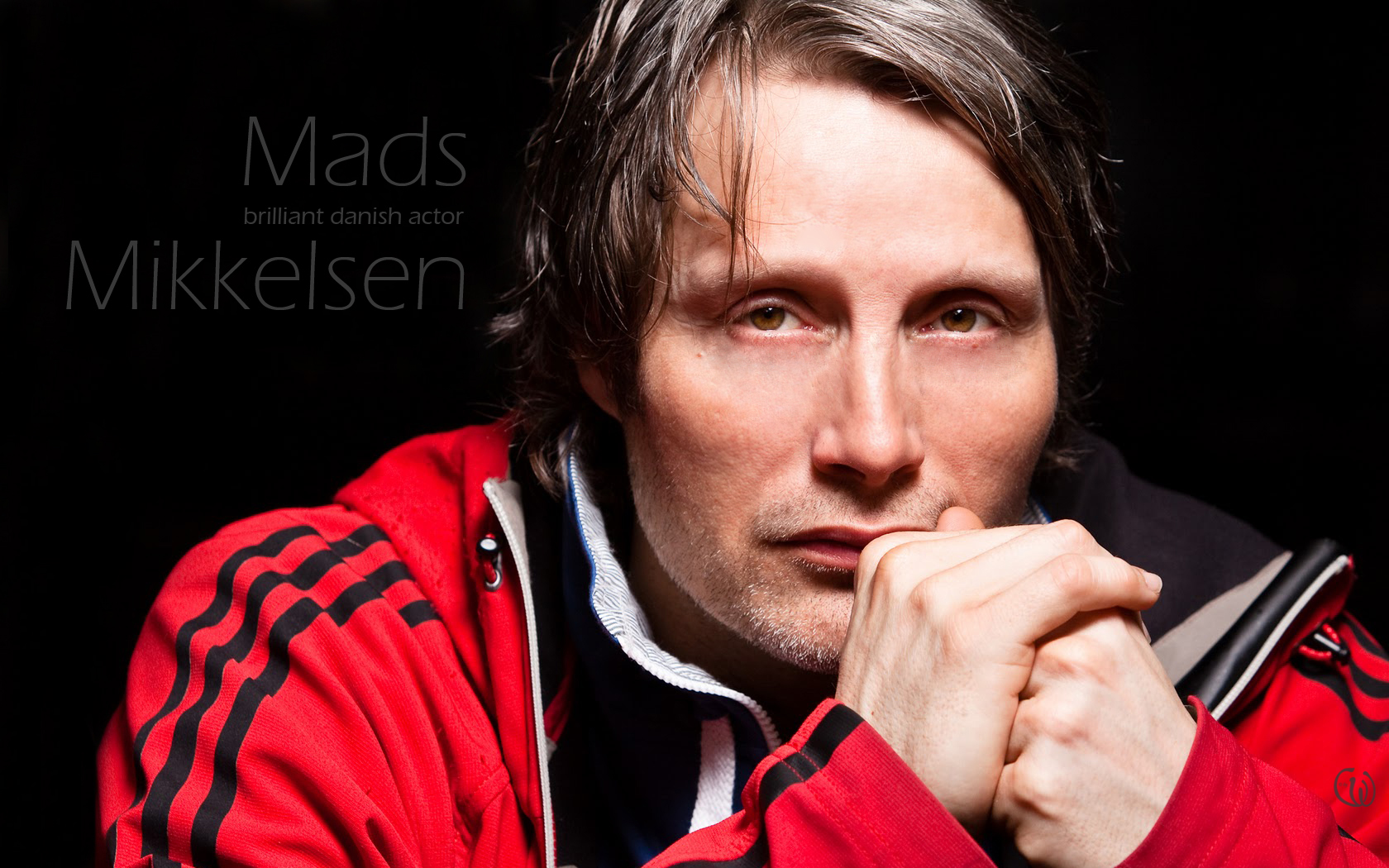 Mads Mikkelsen Wallpaper (23768039)