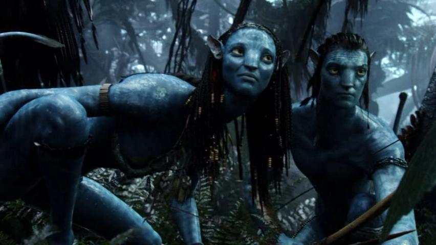 Ass Avatar 70