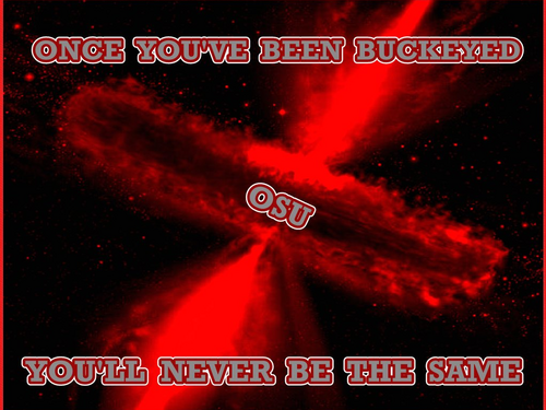 ONCE YOU;VE BEEN BUCKEYED