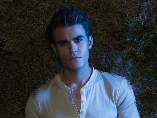 Paul Wesley wallpaper possibly containing a portrait titled Paul Wallpaper ღ