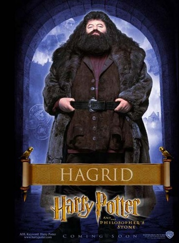 Philosopher's Stone Character Poster - Hagrid
