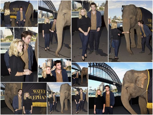 Water for Elephants Sydney press conference 1