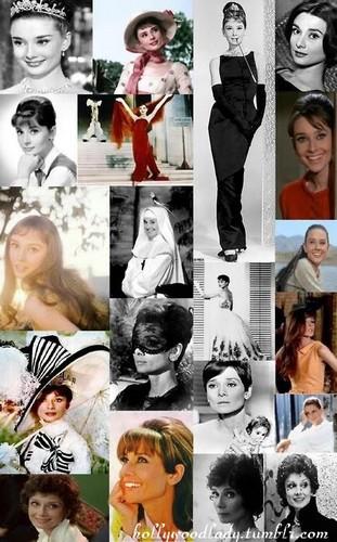 Audrey Hepburn in Hollywood