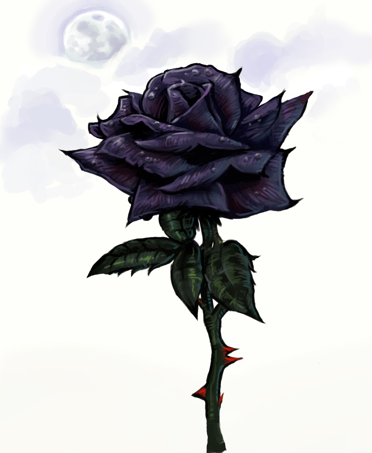 Black roses images black rose hd wallpaper and background for How to make black roses
